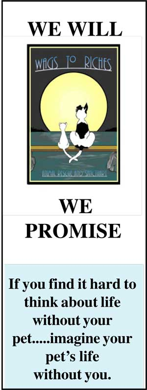 We Will, We Promise